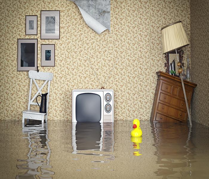 Water Damage Precautions When Returning to Your Wilson County Home