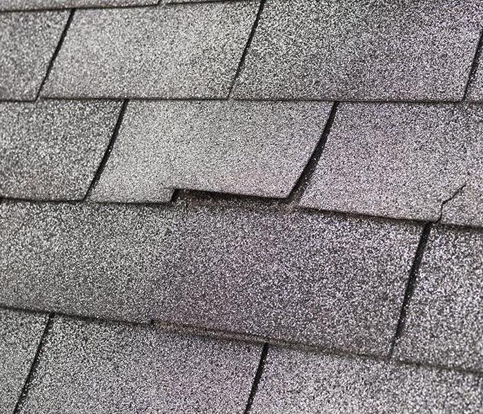 Mold Remediation Reduce The Risk Of Mold Damage In Watertown By Checking Your Roof For These Common Causes Of Leaks
